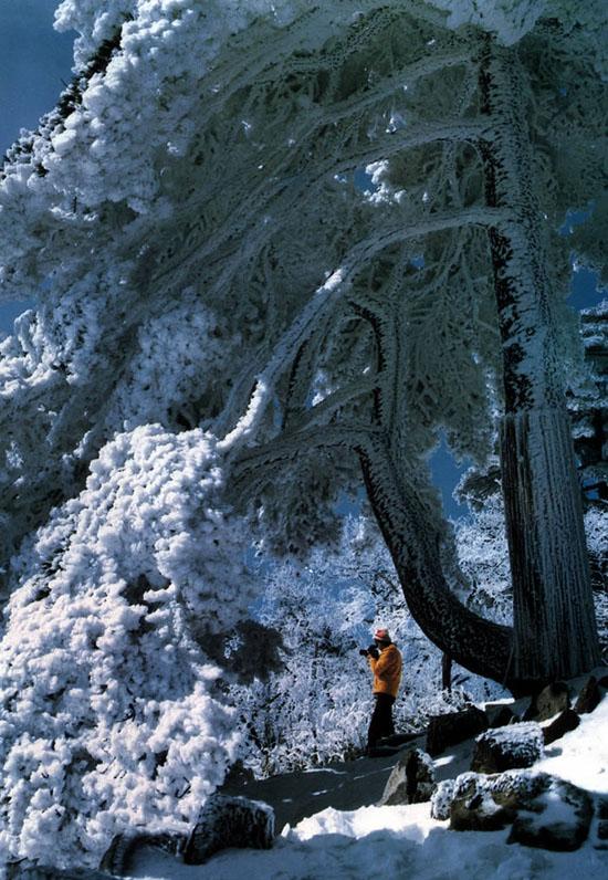 黄山,西海大峡谷,新安江山水画廊三日游